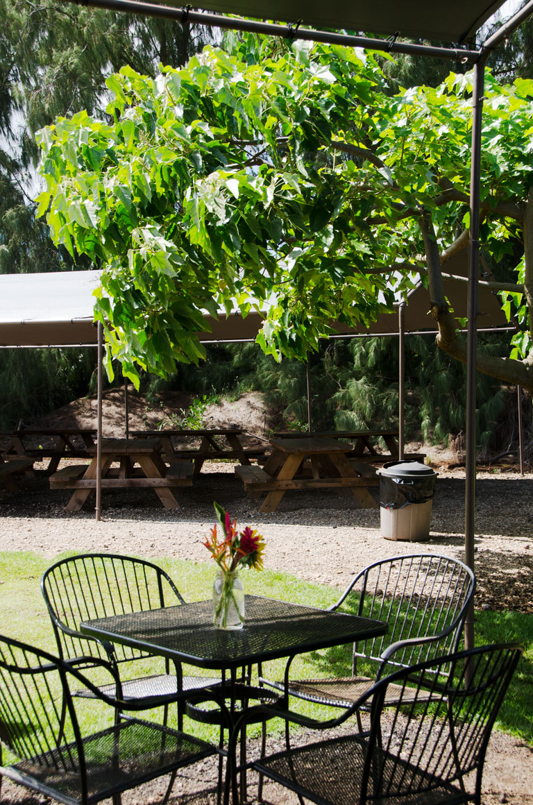 Kahuku Farms Farm Cafe