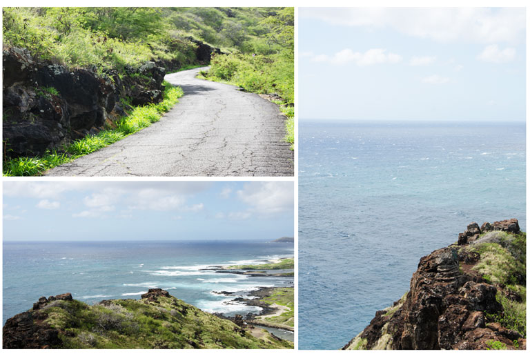 Makapuu-Point-Lighthouse-Trail17