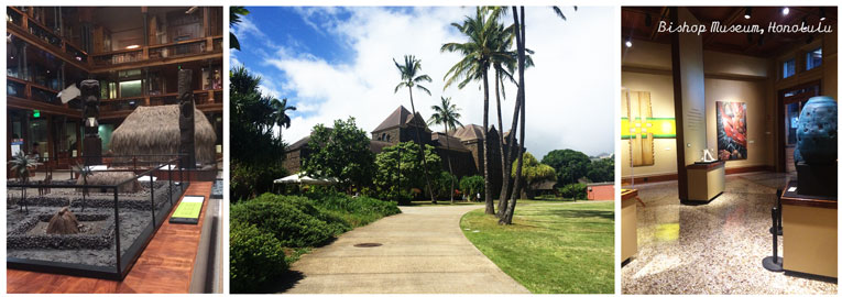 things-to-do-when-it-rains-on-oahu-bishop-museum-honolulu