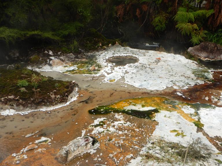 Waimangu - Rotorua-11