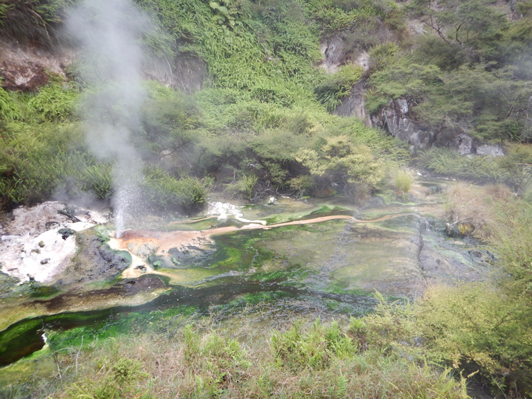 Waimangu - Rotorua-13