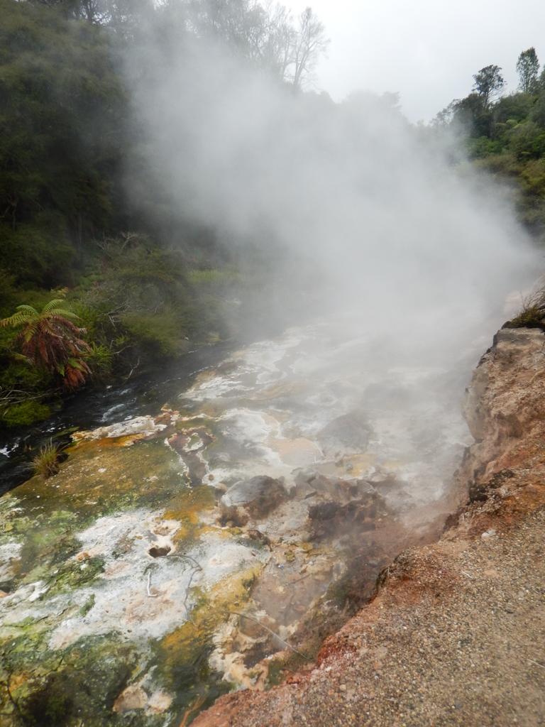 Waimangu - Rotorua-14