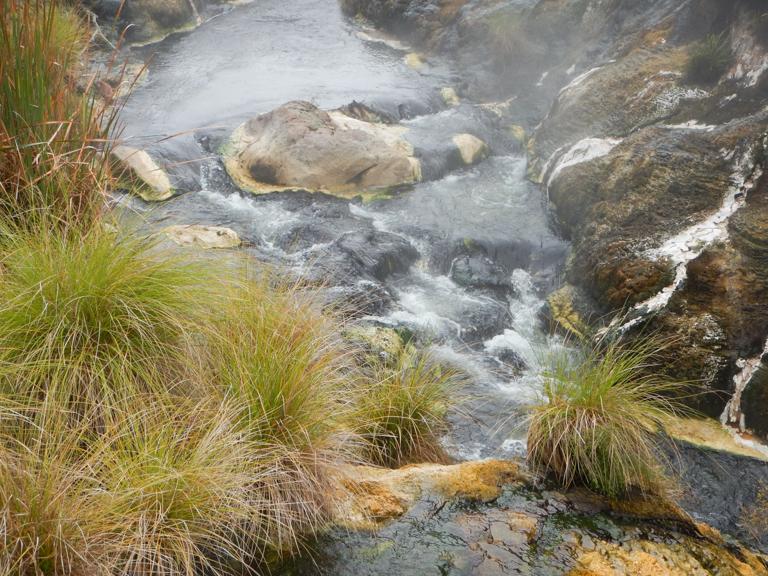 Waimangu - Rotorua-16