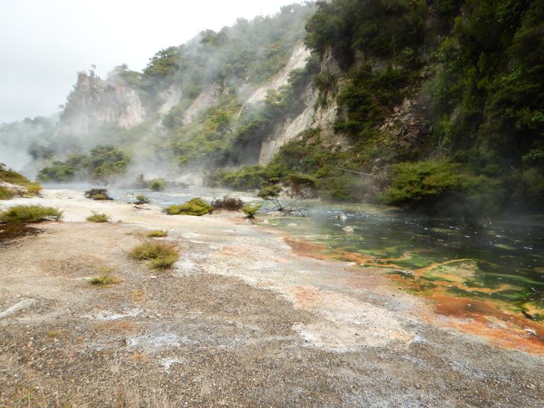 Waimangu - Rotorua-6