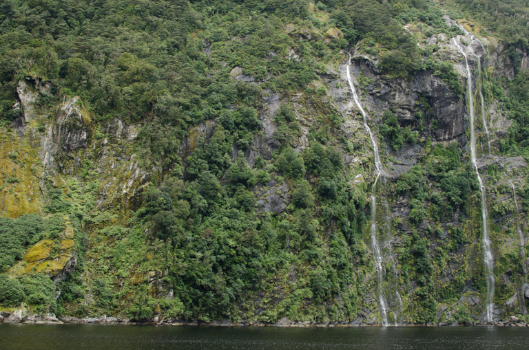 Doubtful Sound-16