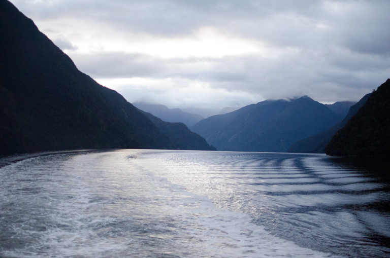 Doubtful Sound-26