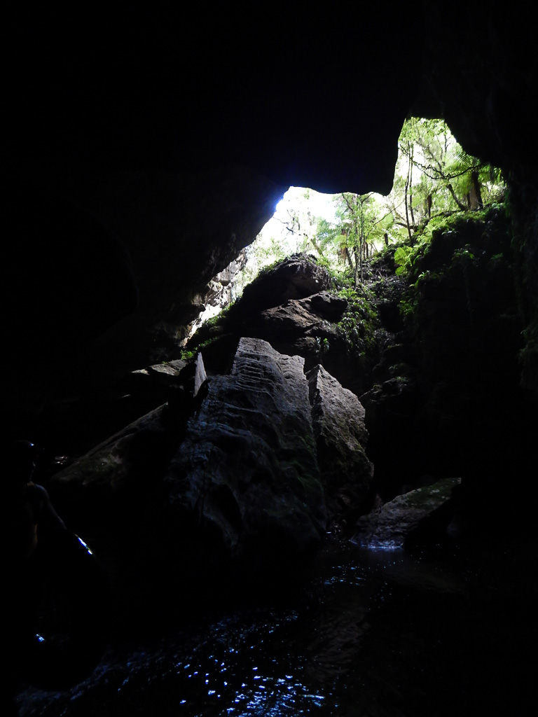 Glowworm Caves Te Anau (43 of 45)