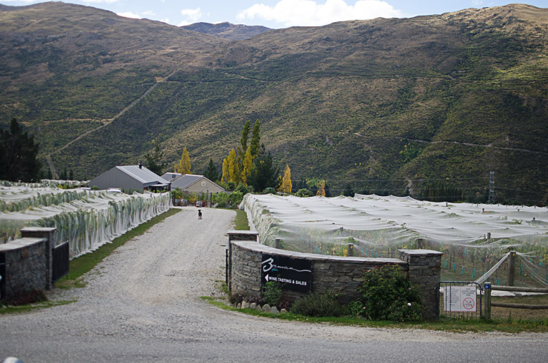 Otago Wine Tour (18 of 29)