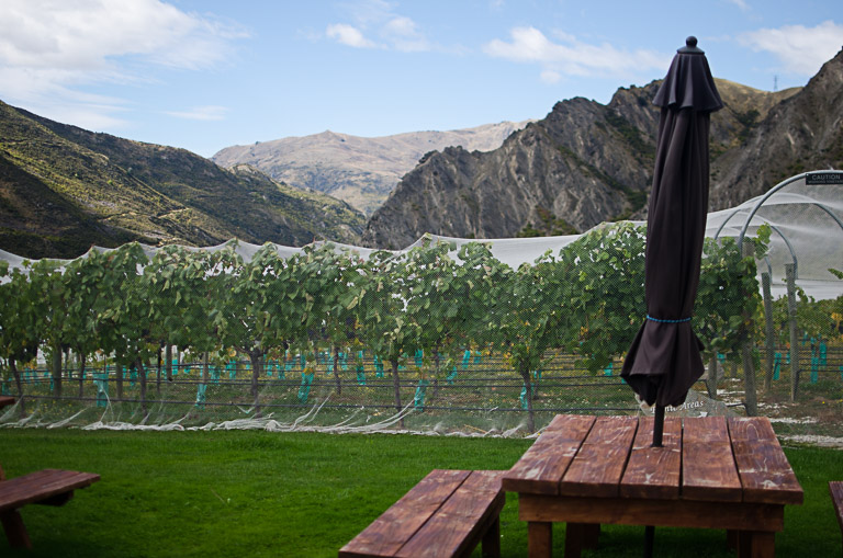 Otago Wine Tour (21 of 29)