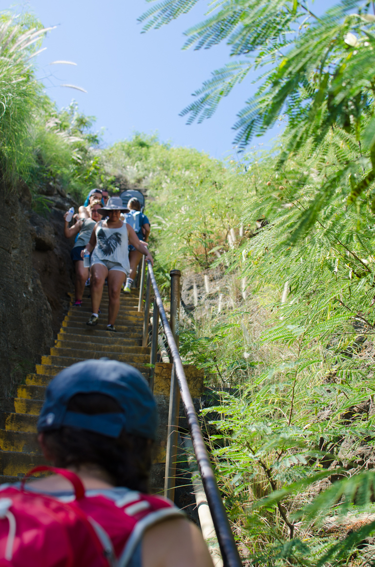 Guide to Diamond Head (19 of 39)