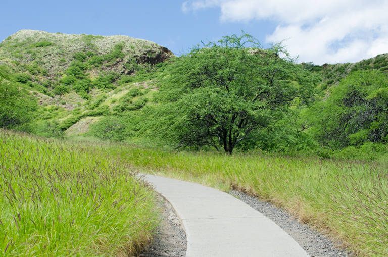 Guide to Diamond Head (2 of 39)